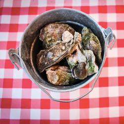 Oyster Roast Photoshoot