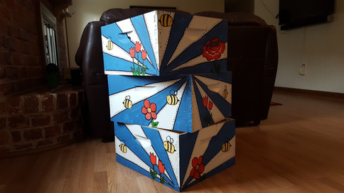 Custom Bee Boxes