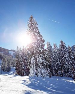 Colorado Winter Photography