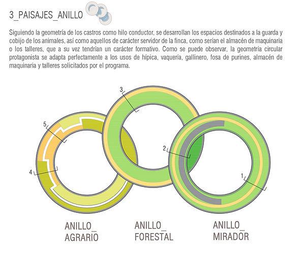anillos02.jpg