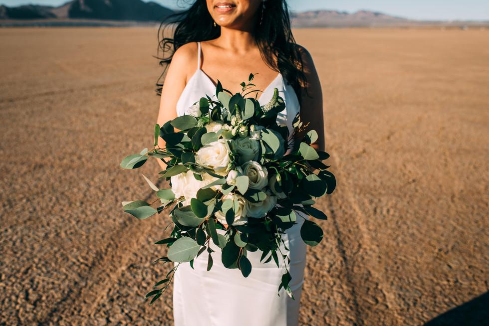 las-vegas-elopement-desert-dry-lake-bed.jpg