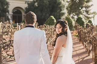 gallery of intimate las vegas weddings-min.jpeg