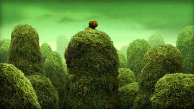 Snail dream