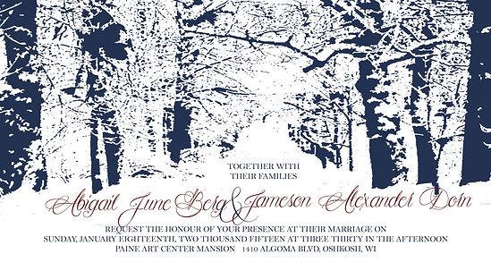 Winter Wonderland Wedding Beautiful elegant invitation to showcase a winter scene