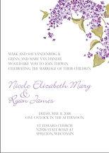 Nikki Vandenberg wedding-1.jpg