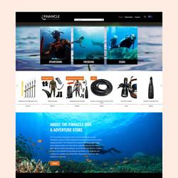TPD website 1