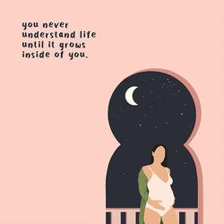 Pregnancy Illustration