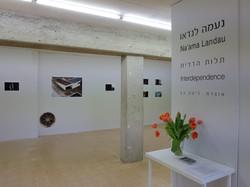 Artist Na'ama Landau
