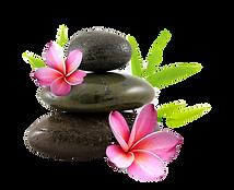 581-5816638_bien-tre-png-flores-y-piedra