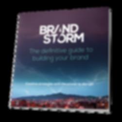 Branstorm-10 step guide.png