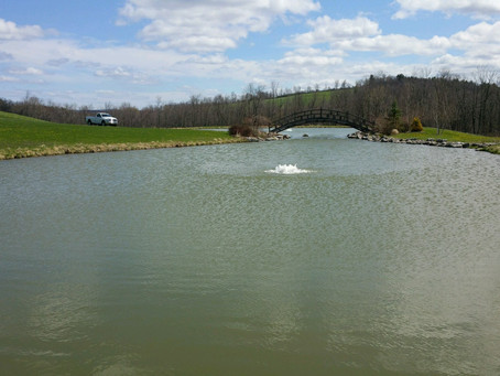 Can your pond thrive without Solar Aeration?