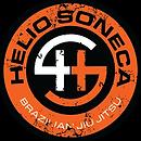 soneca_logo.png