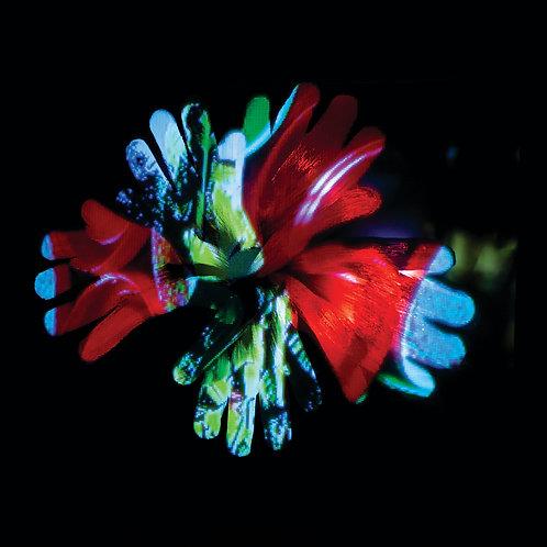 POISON GARDEN: The poisonous flower prints
