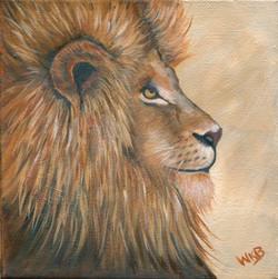 lion286