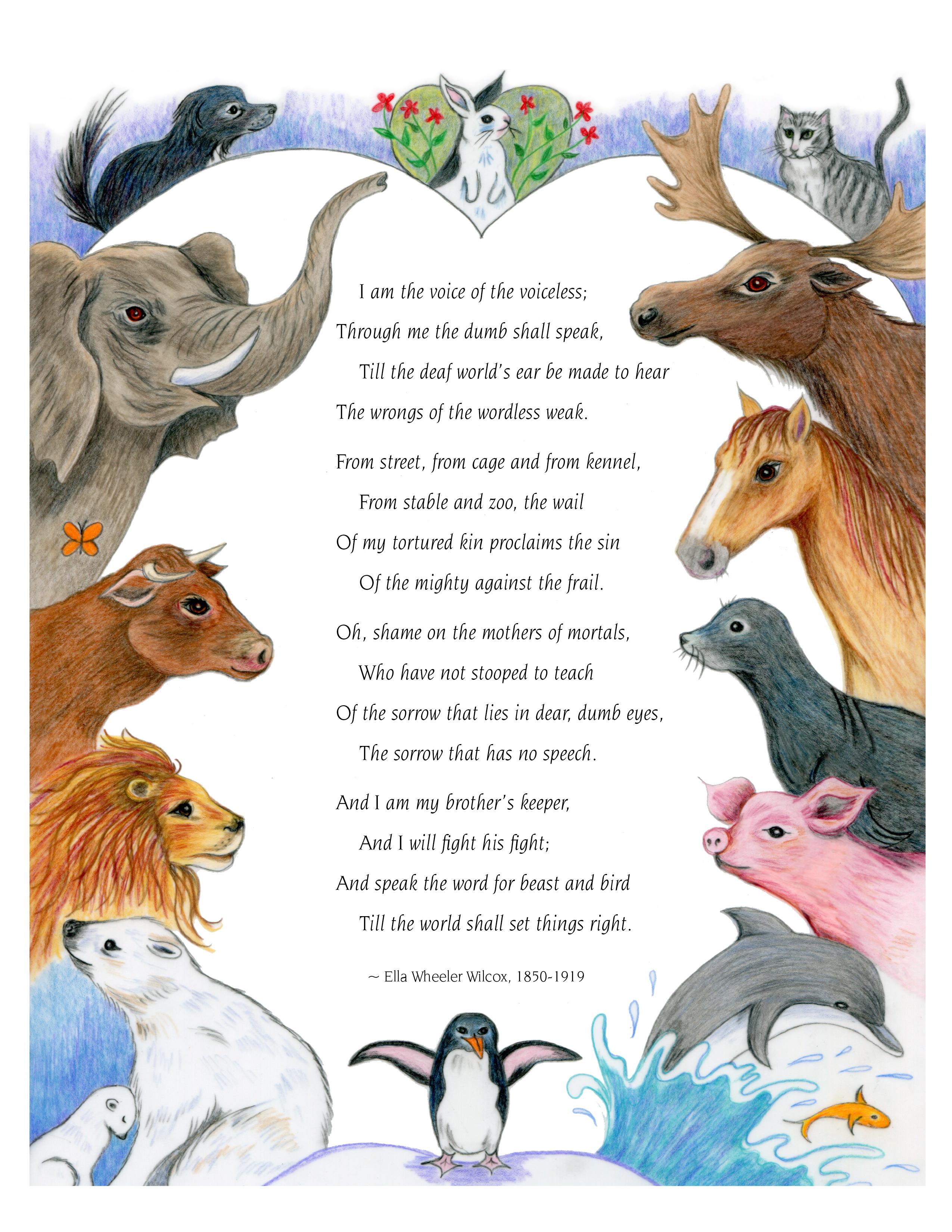 wilcox poem