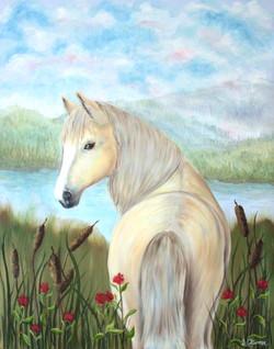 horse416