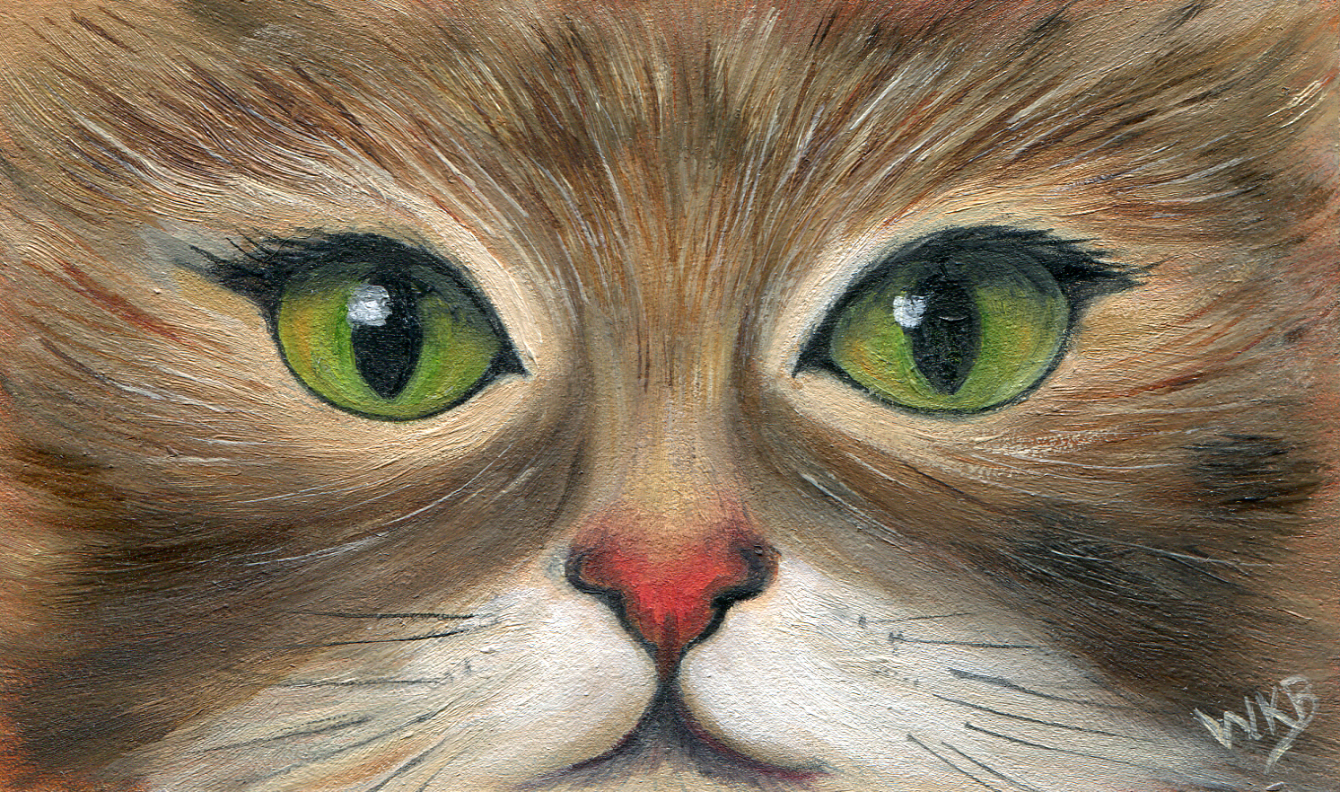 green-eyed cat257