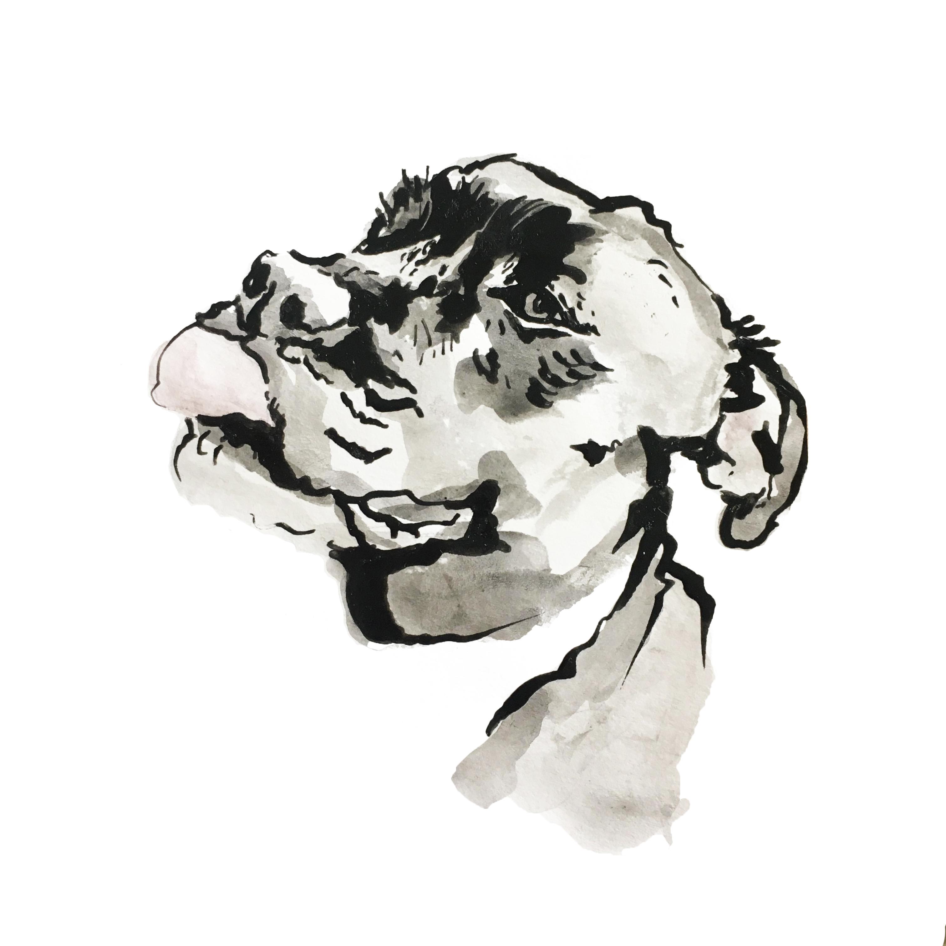 A5 (1/3)