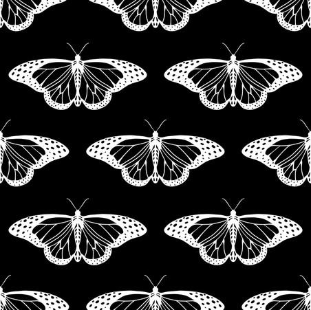 borterflies.jpeg