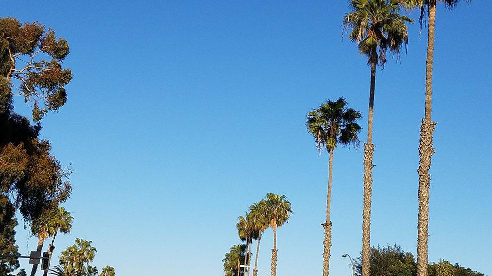 Ebook-San Diego en 3 jours