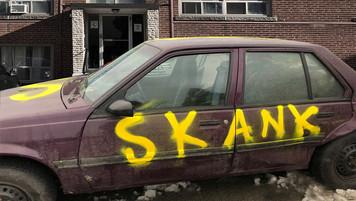 Skank Car Exterior