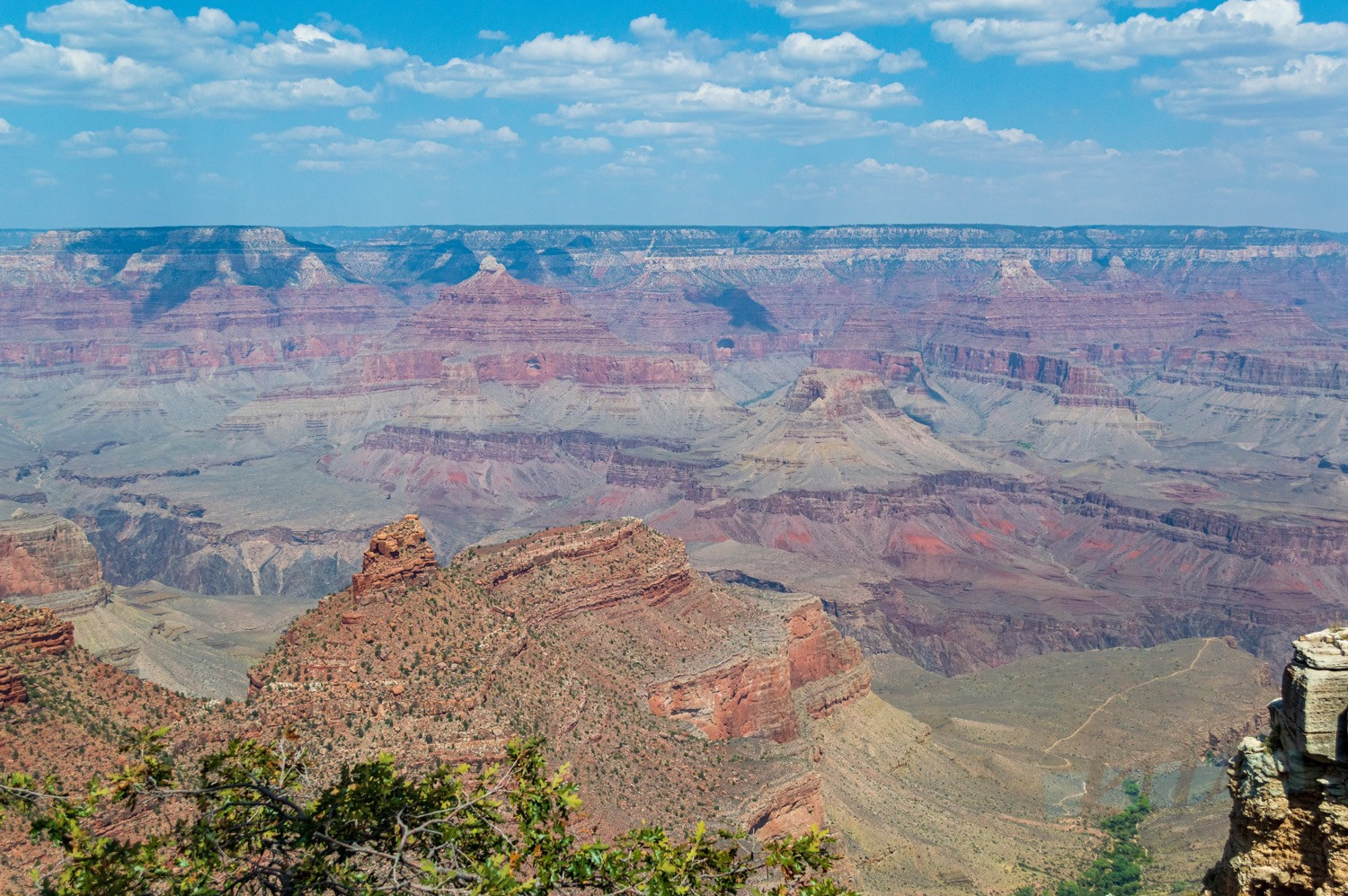 Views of the Grand Canyon