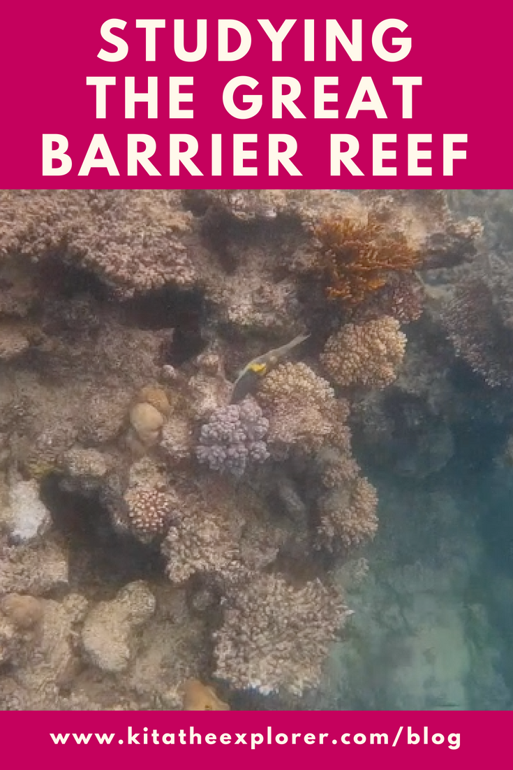 Studying the Great Barrier Reef Cover