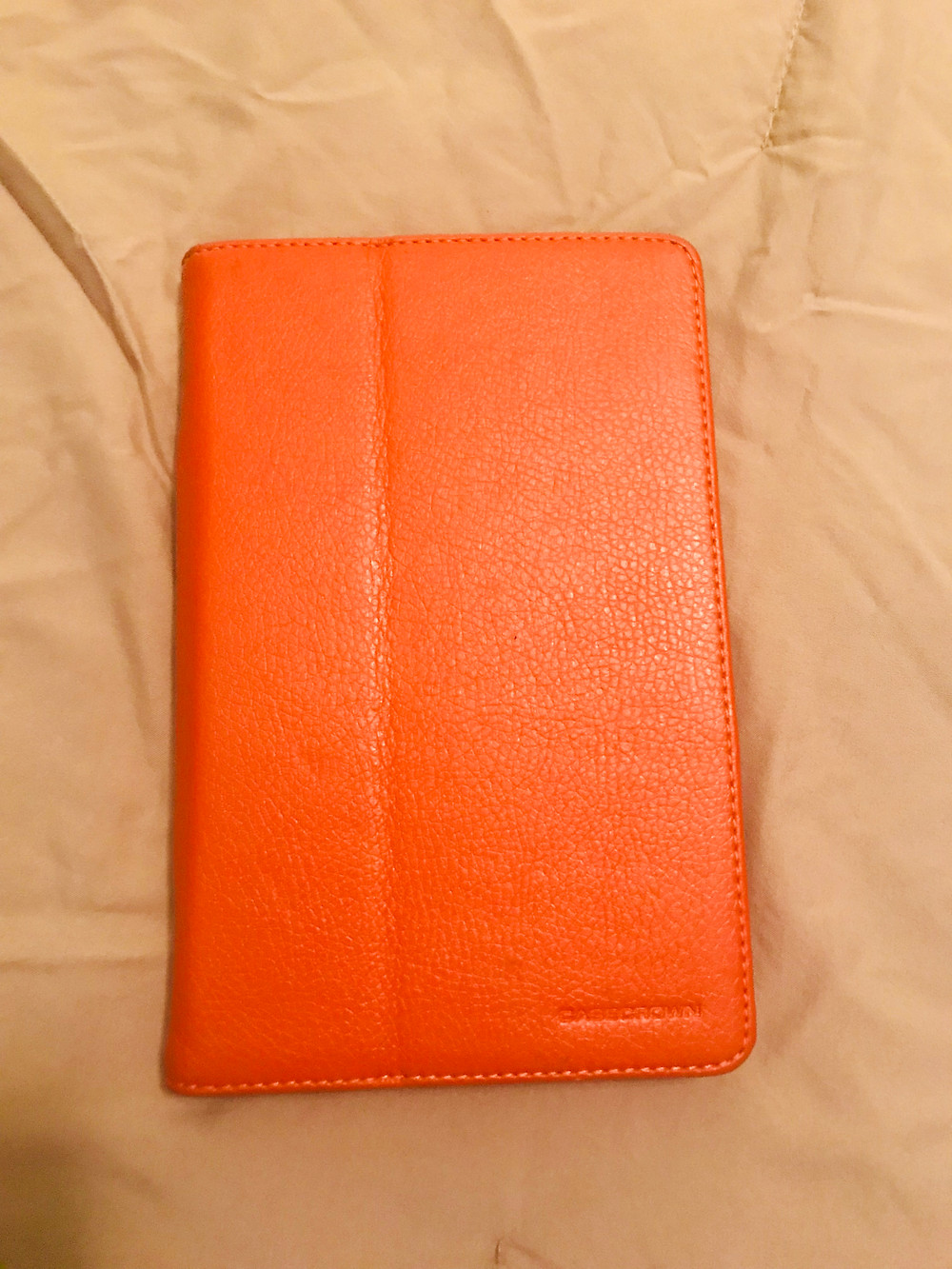 Picture of my Kindle in its case by Kita the Explorer