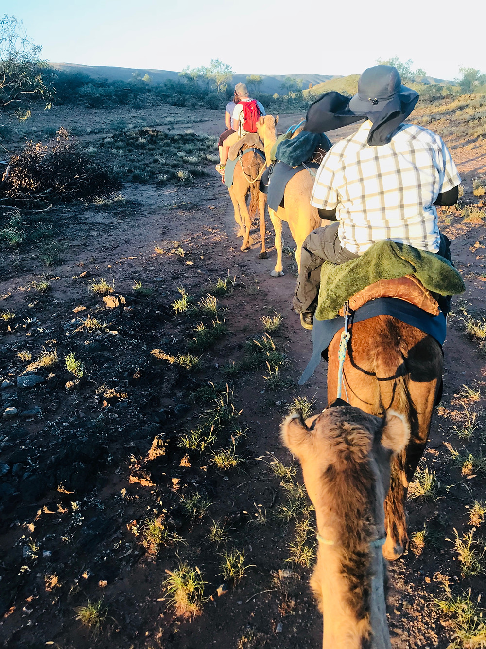 Riding Camels in The Outback by Kita the Explorer