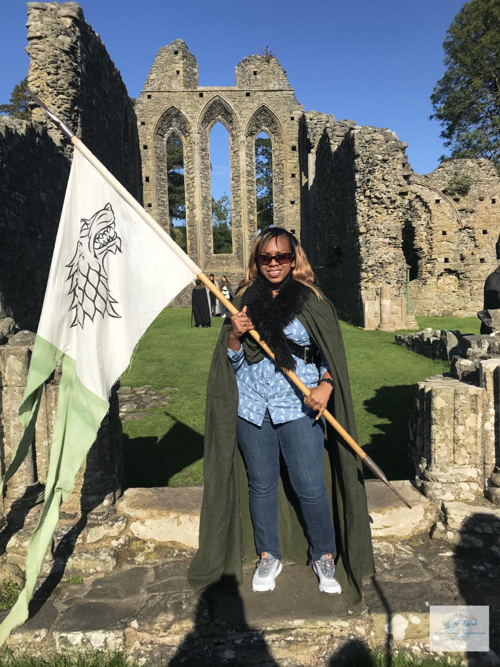 Winterfell Flag