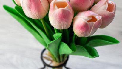 Pink Blush 12 Stem Tulips