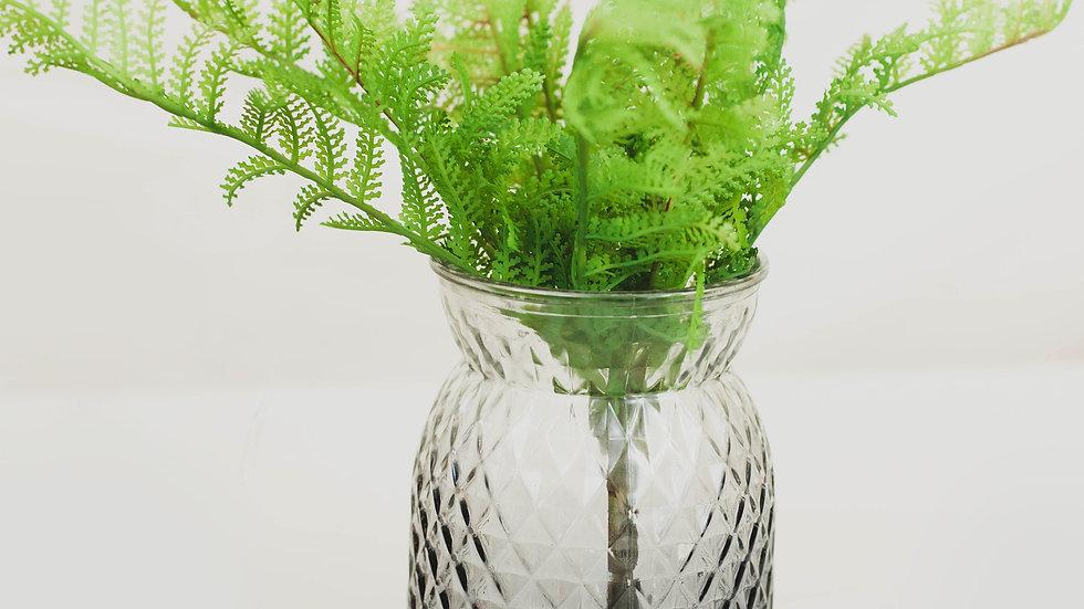 Lady Fern in a Grey Vase