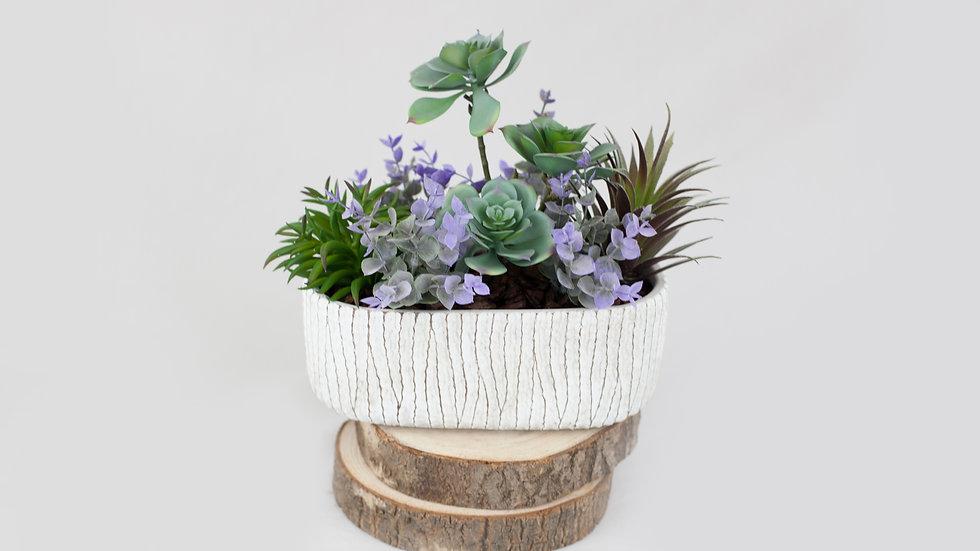6 pc succulent arrangement