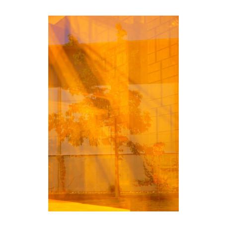 CHÊNE-ORANGER