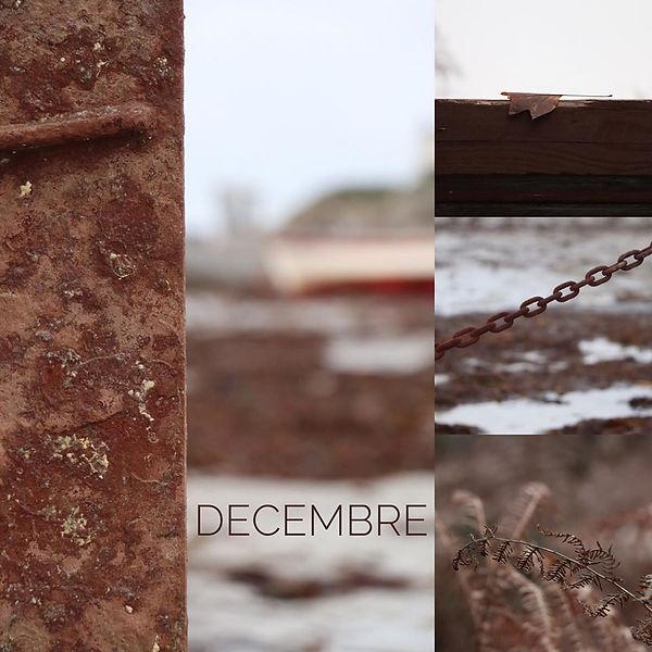 Maud-Decembre.jpg