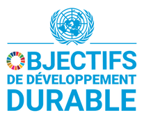 F SDG logo with UN Emblem_Square_WEB_tra