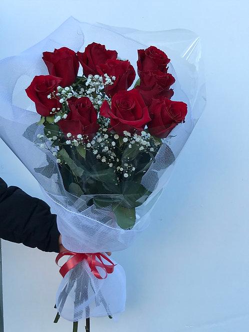 Розы Эксплорер