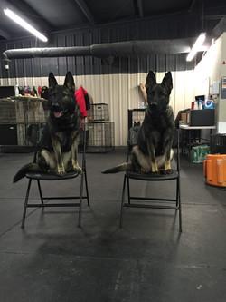 Just sitting around