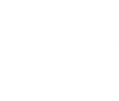 WHITE_FLOWER-01.png