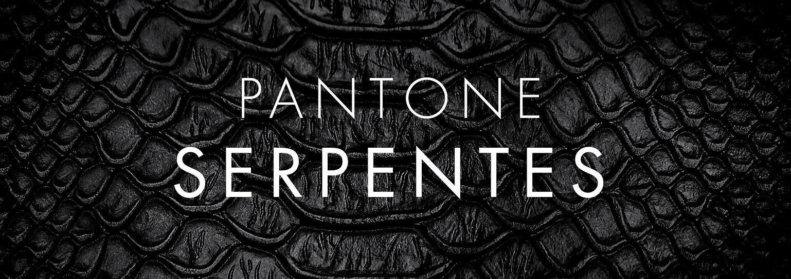 pantone serpentes banner-01.jpg