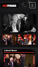Banda website templates – Country Rock