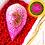 Thumbnail: Pink Multi Weave Nariyal