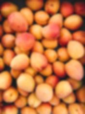 raph-nutrition-apricots