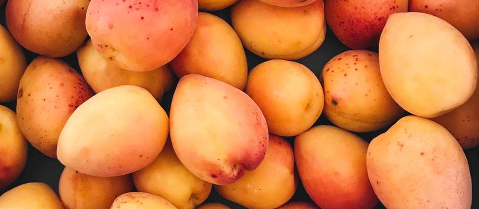 Abricot et idées recettes