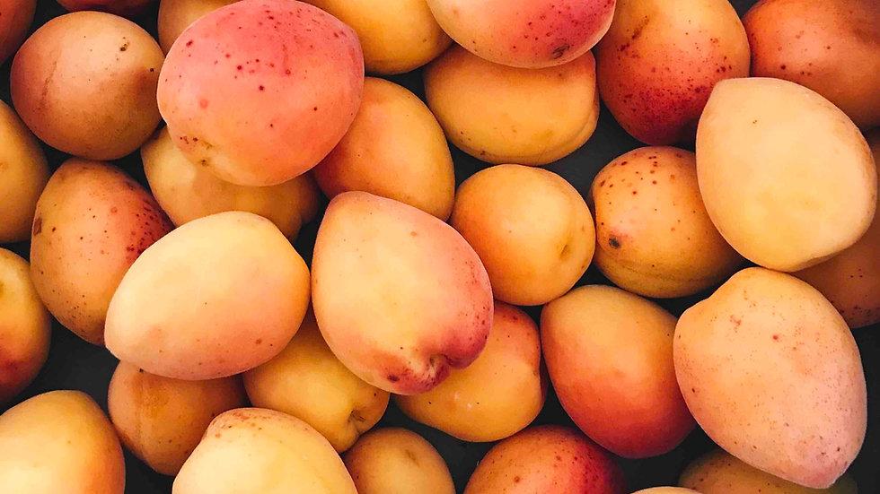 abricots 500g