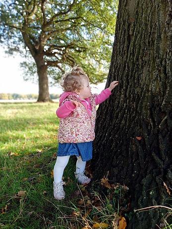Girl inspecting a tree.jpg