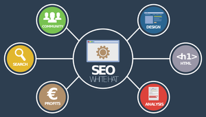 5 Easy SEO Tips to Boost Your Site
