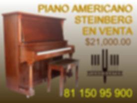 STEINBERG 99200 (1).jpg