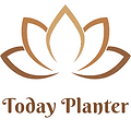 Today Planter1.png