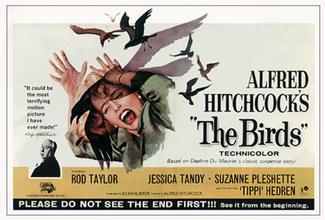 #4 The Birds